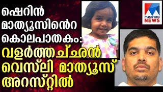 Father of missing 3-year-old Sherin Mathews arrested after changing story   Manorama News