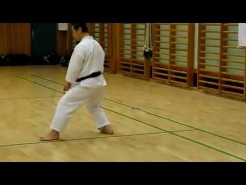 Sensei Masao Kagawa Demonstrates The Shifting Between Nekoashi Dachi And Kokutsu-dachi video