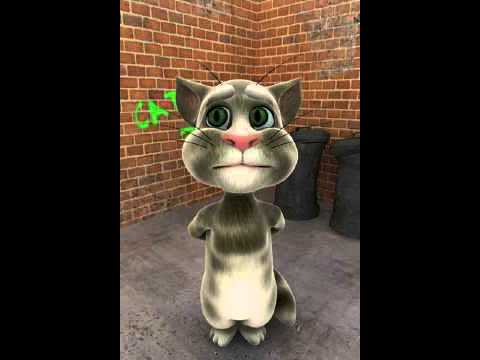 Talking Tom Gets His Lights Punched Out