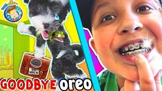Saying Goodbye To Puppy Hello To Mikes New Braces Funnel Vision Vlog