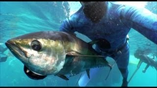 Spearfishing Cameron Kirkconnell World Record Tuna - Episode 5