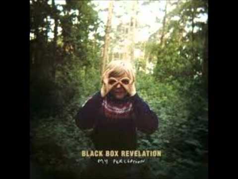 The Black Box Revelation - My Perception