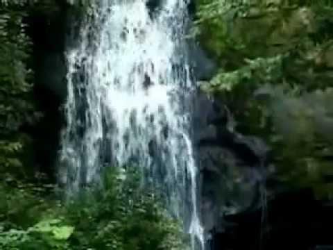Shabad Gurbani - Vin Boleya Sab Kich Janda - Guru Amar Das Ji's Shabad video