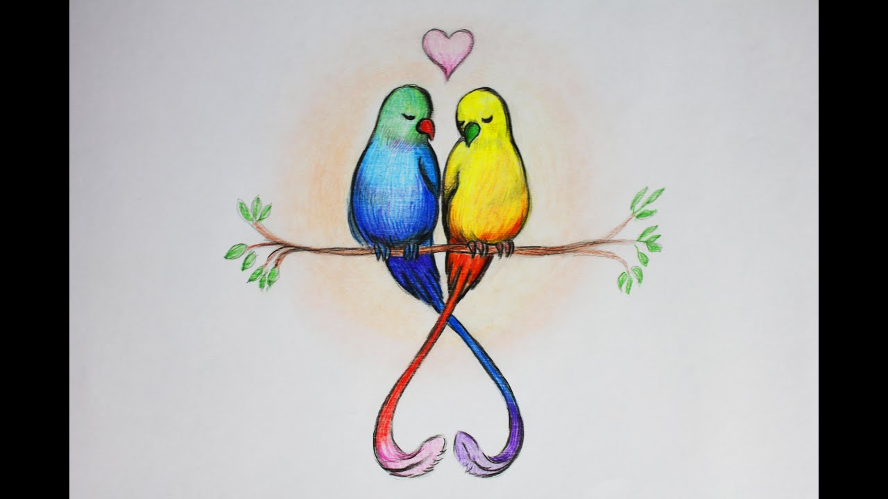 Рисунки птичек для срисовки