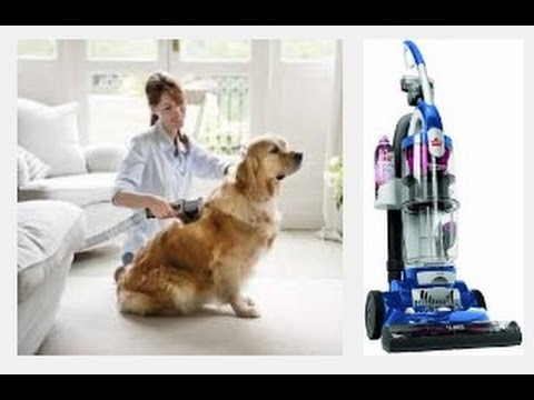 Top 5 Best Vacuum for Pet Hair 2018