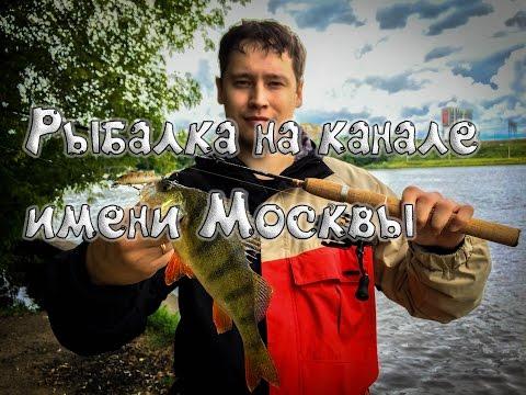 рыбалка канал имени москвы долгопрудный видео