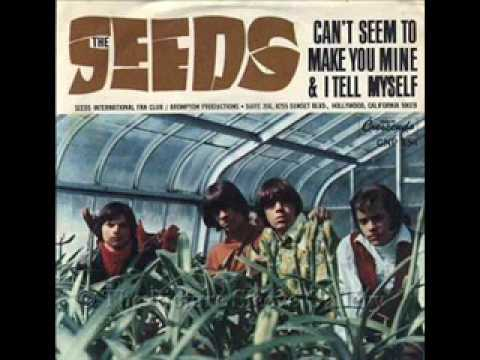 Thumbnail of video The Seeds - Can't Seem to Make You Mine - Lynx Bullet Advert Song