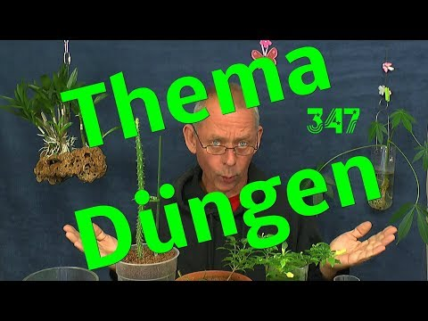 Probleme mit Pflanzen? Wie düngt man Zimmerpflanzen, exotische Pflanzen usw