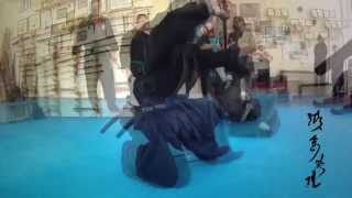 XIX SUMMER CAMP BUJINKAN GREECE NINPO TAIJUTSU 2014 with HARRY MITROU