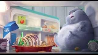 Тайная жизнь домашних животных (2015). Дублированный трейлер - Продолжительность: 2 минуты 33 секунды