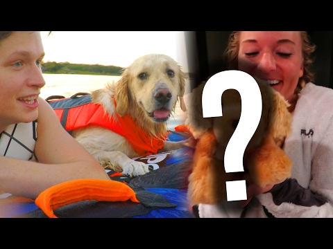 DOG GOES TUBING + BIG SURPRISE! (Super Cooper Sunday #87)
