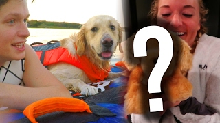 DOG GOES TUBING + BIG SURPRISE! (Super Cooper Sunday #87)