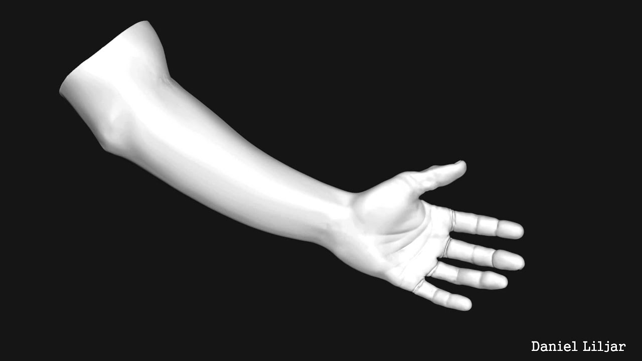 Arm Model 3d 3d Hand / Arm Model Turntable