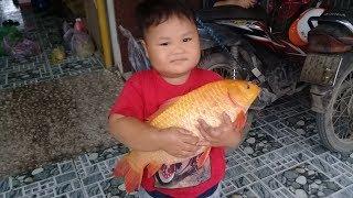 Đồ chơi trẻ em bé pin cá chép khổng lồ ❤ PinPin TV ❤ Baby toys carp giant