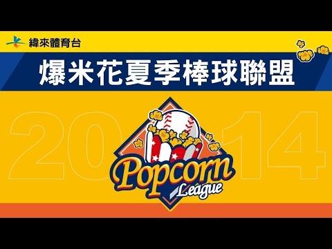 棒球-2014爆米花夏季棒球聯盟