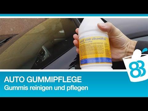Gummidichtungen auto pflegen