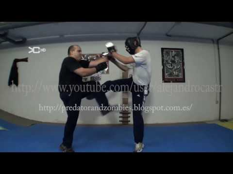 Beginning Wing Tsun Techniques : Wing Tsun Poon Sau Drills Image 1