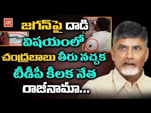 TDP Legal Cell Vice President Madapati Ramareddy Resign | Chandrababu | YS Jagan | YOYO TV Channel