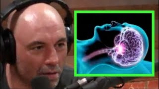 Joe Rogan - The Science of Sleep