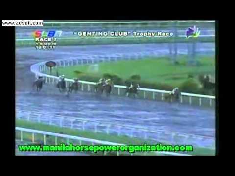 SLLP RACING HORSE CARMONA CAVITE