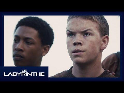 Le Labyrinthe - Featurette Gally [Officielle] VOST HD