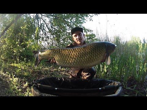 шапарской канал рыбалка