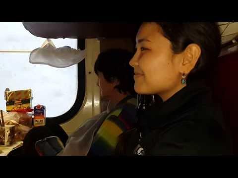 Марат - Аяулым (Поезд Москва Алматы 21.01.2014, казахские песни под гитару)
