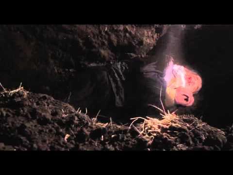凶悪 (映画)の画像 p1_14