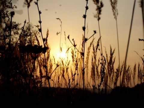 Ах ты, степь широкая Русская народная песня Наталия Муравьева Лучшие застольные песни Folk Song