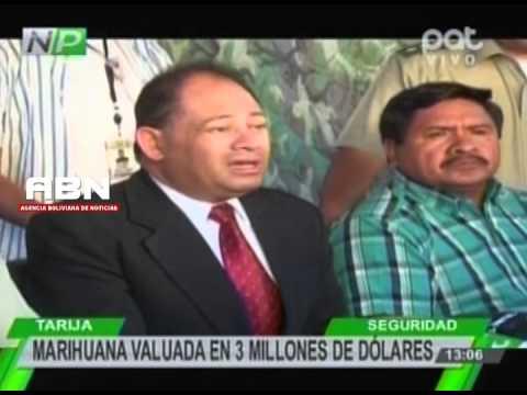 Lograron incautar tres toneladas de marihuana en la frontera con Paraguay