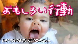 爆笑 ハプニング 海外の赤ちゃん達のクス笑い動画集