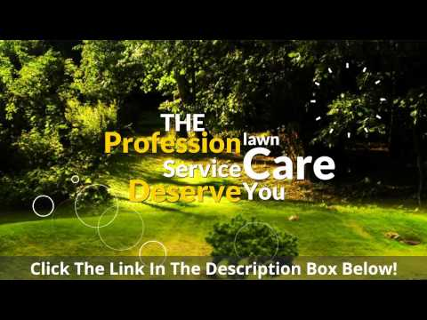 Lawn Care  Landscaping  Cape Coral , Fort Myers  Lehigh Acres Florida...