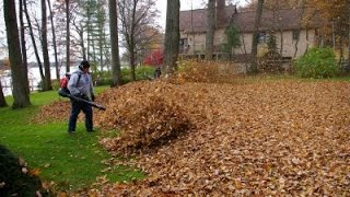 Redmax EBZ8500 Blowing Leaves/ Lawn Care Vlog