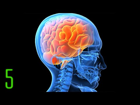 5 Scary Things You Didnt Know About Your Brain