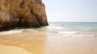 download lagu Beach Scene  Background gratis