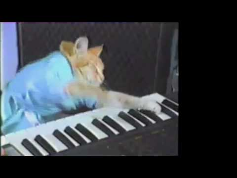 Keyboard Cat plays off the Tattoo