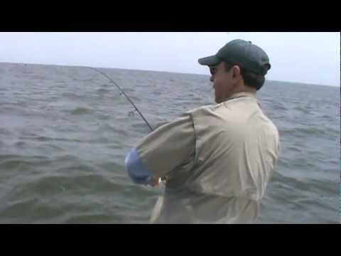 Barnegat Bay Bluefish on topwaters aboard Hi Flier June '10