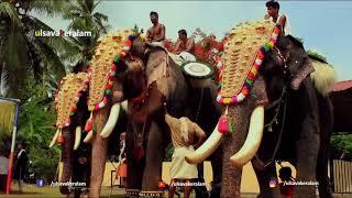 King of elephants thechikottukavu ramachandran: ഏകഛത്രാധിപതി തെച്ചിക്കോട്ടുകാവ് രാമചന്ദ്രൻ