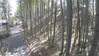 大磯 Oiso/Kanagawa,Japan(自然と文化のおもてなし Hospitality with Nature and Culture)