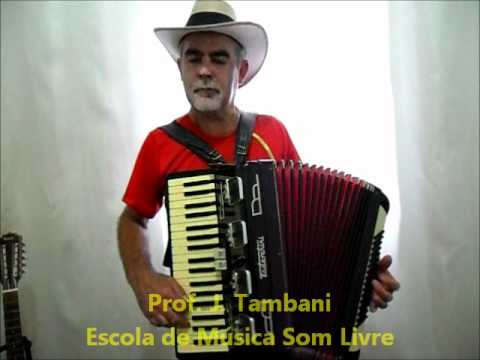 Prof. J. Tambani - Aula de Acordeon Music Videos