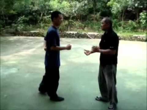 Yin Style Bagua - Tai Chi Peng, Ji, Cai  - 太極拳 掤、擠、採
