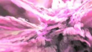 Watch Cocteau Twins Oomingmak video