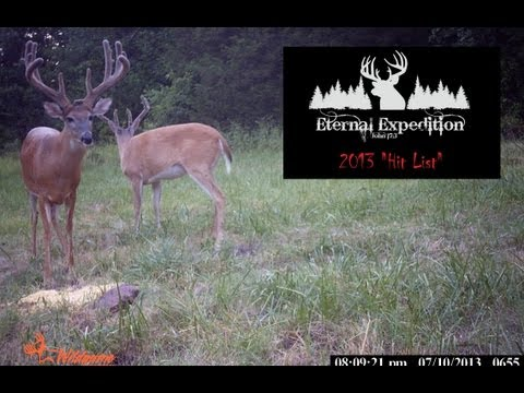 Eternal Expedition 2013 Big Buck