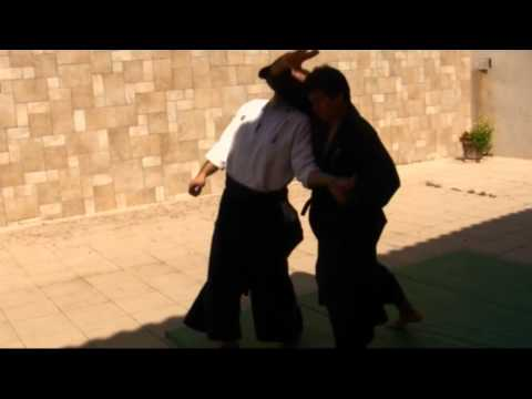 Ogawa Ryu Aikijujutsu Training Moments in Spain Image 1