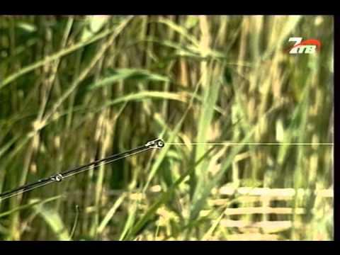 Диалоги о рыбалке №9 - Карась на Кубане [видео рыбалка онлайн]