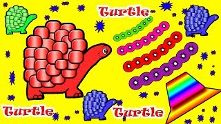Learn Colors With Animals Transporter for Kids - Colours With Animals Turtle Ball Baby Monster