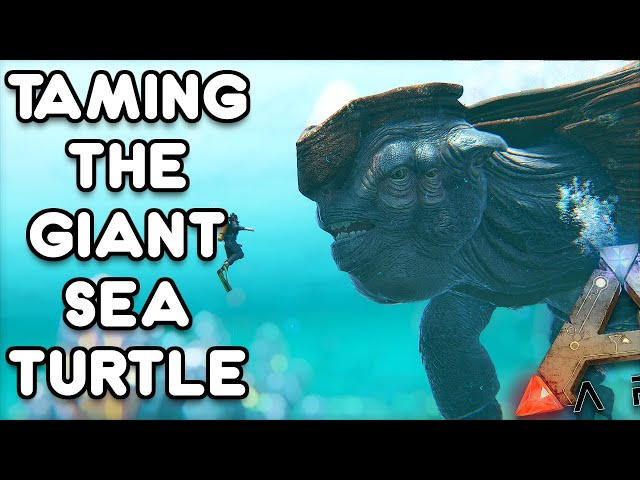 TAMING THE GIANT SEA TURTLE, THE FISH ARE HIS FRIENDS  ARK GENESIS EP7