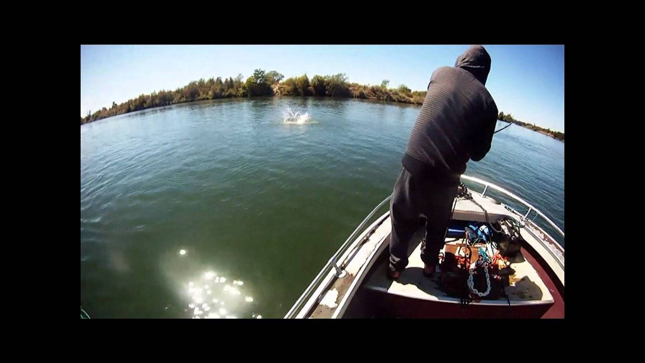 Feather river salmon fishing at shanghai bend youtube for Feather river salmon fishing