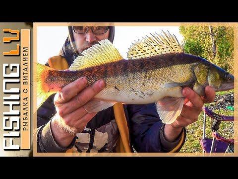 лиелупе рыбалка
