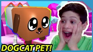 THE *NEW* DOGCAT PET IS IMPOSSIBLE TO GET... ROBLOX BUBBLE GUM SIMULATOR